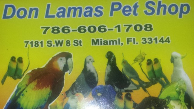 Don Lamas Pet Shop Miami