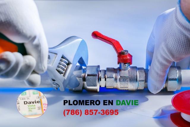 Plomero en Davie (786) 857-3695